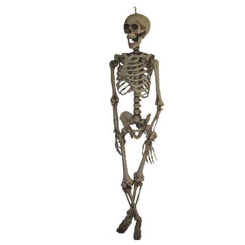 Morris Costumes Skeleton Hanging -