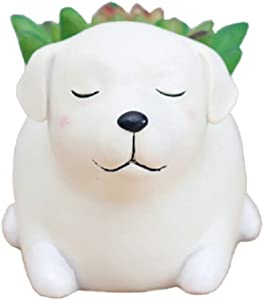 Youfui Cute Dog Flowerpot Resin Succulent Planter Desk Mini Ornament (Labrador)