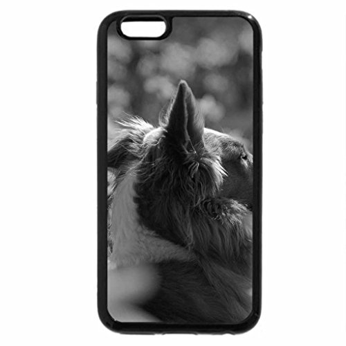 iPhone 6S Case, iPhone 6 Case (Black & White) - Dog on the yellow meadow