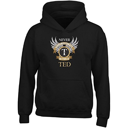 Ted Adult Hoodie (Never Underestimate The Power Of Ted Great Personalized Gift - Adult Hoodie)