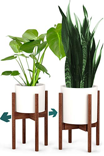 Fox & Fern Plant Stand - Adjustable Width 8 up to 12 - Solid Walnut - EXCLUDING Ceramic Planter