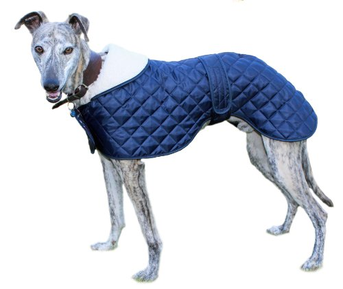 Made in the UK greyhound / whippet anorak dog coat - Navy - 60cm / ()