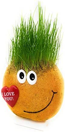"""Cool Weirdos Decorative Indoor Grass Plant in Love Emoji. Natural, DIY Gardening Decor for Kids and Adults. Grow Real, Trimmable """"Hair"""" from Seeds. More Fun Than Chia Heads"""