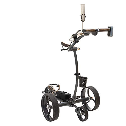 Cart Tek Battery