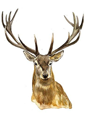 Deer wall art #A009. Deer art print (8x10). Deer Painting.Deer pictures.Pictures of deer.Deer print.Deer art.Deer artwork.Deer nursery decor.Deer watercolor print. ()
