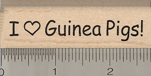 I Heart Guinea Pigs Rubber Stamp, Cavy Love Saying