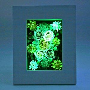 アートフォーシーズン NNF (2.オレンジイエロー グリーン発光)  光るバラ  ホタル プリザーブドフラワー B004KPPR22  2.オレンジイエロー グリーン発光