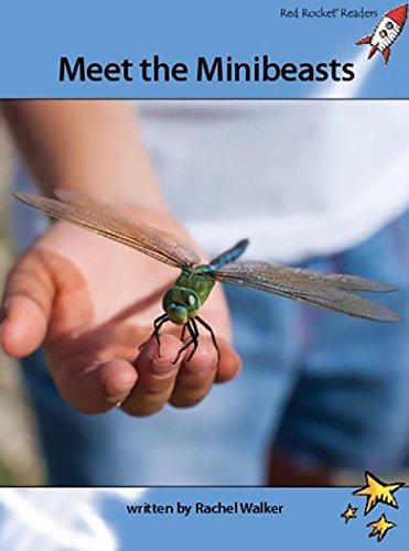 Meet the Minibeasts: Standard English Edition (Advanced Fluency 4 Non-Fiction Set A) pdf