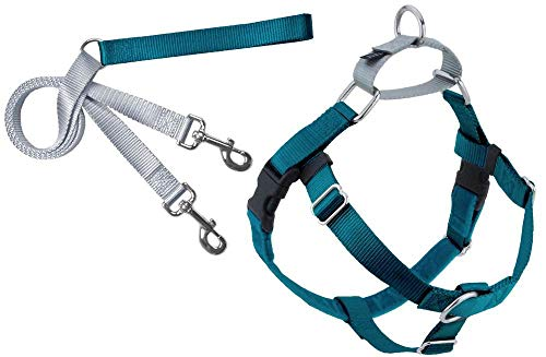 "2 Hounds Design Freedom No-Pull Dog Harness and Leash, Adjustable Comfortable Control for Dog Walking, Made in USA (Medium 1"") (Teal)"