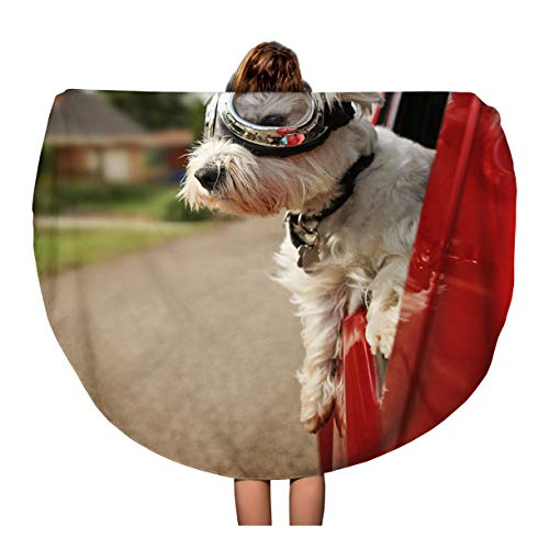 Semtomn 60 Inches Round Beach Towel Blanket Cute Westie West Highland Terrier Goggles on Riding in Car Down Urban Neighborhood Travel Circle Circular Towels Mat Tapestry Beach Throw