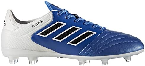 check out 1d67b f8b77 adidas Copa 17.2 FG Fußballschuh Herren