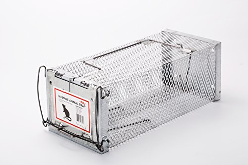 Live Bait Trap (AB Traps Pro-Quality Live Animal Humane Trap Catch and Release Rats Mouse Mice Rodents Squirrels and Similar Sized Pests - Safe and Effective - 11.6