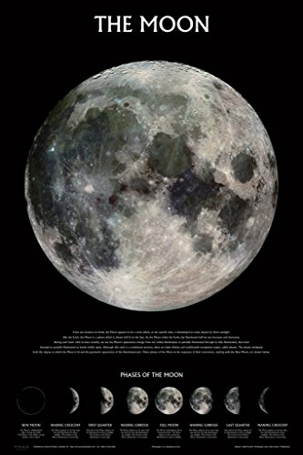 Pyramid America Phases of the Moon Space Lunar NASA Poster 12x18 inch