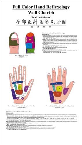 - Full Color Hand Reflexology Wall Chart (English-Chinese)