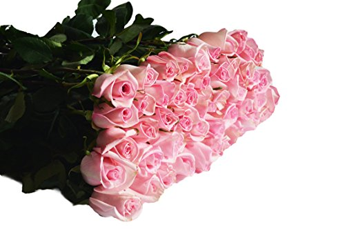 Fresh Cut Flowers For Delivery Prime