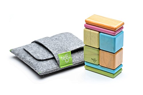 Tegu 8 Piece Pocket Pouch Magnetic Wooden Block Set