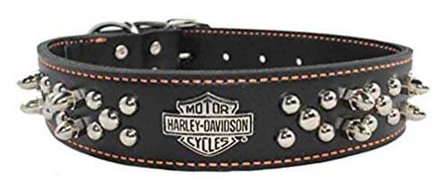 Harley-Davidson Leather Spiked Dog Collar 1.5