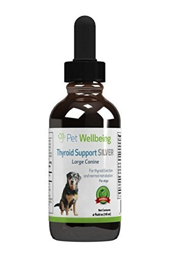 Pet Wellbeing – Thyroid Support Silver for Dogs 4oz Review