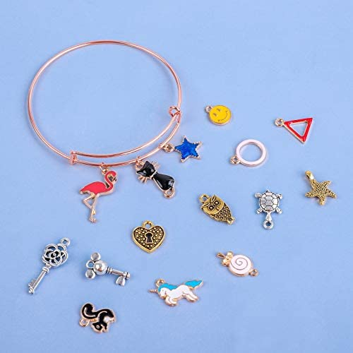 RUODON 325 Pieces DIY Charm Bracelets Kits, 24 Pieces Expandable Bangle Bracelets, 100 Pieces Colorful Charm Pendants, 200 Pieces Rose Gold Open Rings with Storage Bag for Jewelry Making