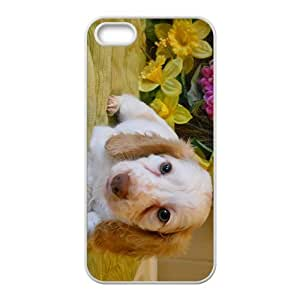 Dog Lady Hight Quality Plastic Case for Iphone 5s