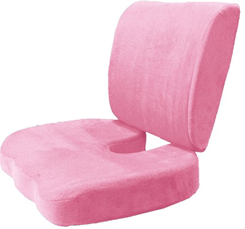 BookishBunny 2pc Memory Foam Seat Chair Waist Lumbar Back Support Cushion Pillow Car Office Home (Pink)