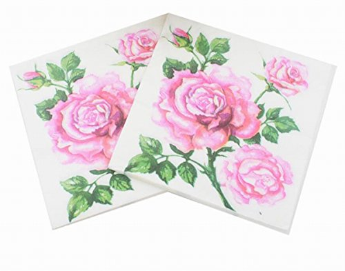 Salome Idea 60 Counts Shower Tea Party Birthday or Wedding Party Napkins,Romatic Floral Napkins(Romatic Floral 41) ()
