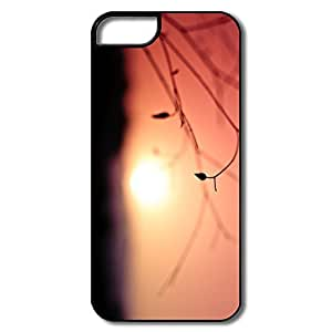 Cartoon Sun Case For IPhone 5/5s