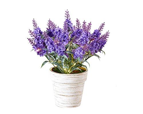 Homeseasons Pre-Lit Faux Lavender Plant-LED Lighted Artificial Lavender Arrangement with Pot (Purple) Lavender Flower Arrangements