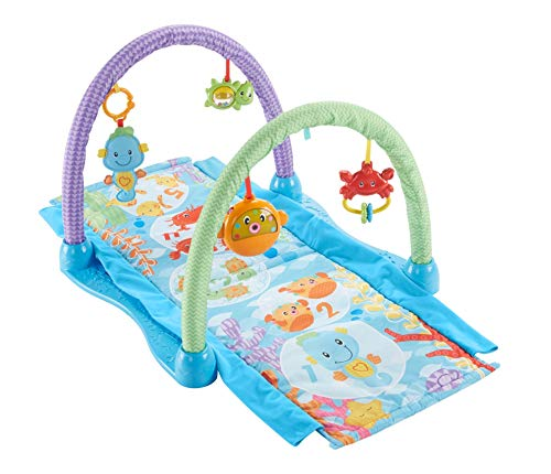 Fisher-Price Kick Crawl Musical Gym, Seahorse