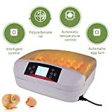 SUNCOO Digital 32 Egg Incubator Hatcher Automatic Egg Turning Temperature Control Poultry Hatching Chickens Ducks Goose Birds Turkey W/LED Display