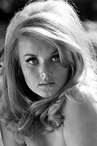 Barbara Bouchet actress