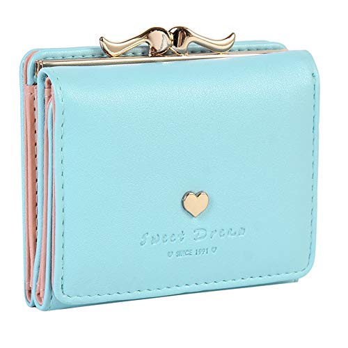 Blue Wallet Womens (Damara Womens Metal Frame Kiss-lock Small Clutch Cards Holder Wallet,Light Blue)