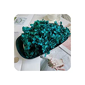 Magic day-Artificial Flower 20G Preserved Flowers Hydrangea,Dry Natural Fresh Forever Hydrangea with Small Leaves,Rose,02 8