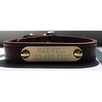 Amazon Brass Name Plate Dog Collar