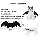 Pet Cat Bat Wings for Halloween Party