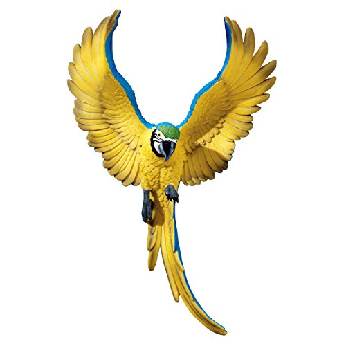- Design Toscano Flapping Macaw Bird Tropical Decor Wall Sculpture, 16 Inch, Polyresin, Full Color