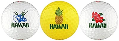 EnjoyLife Inc Hawaii w/Shell, Pineapple & Hibiscus Golf Ball Gift Set