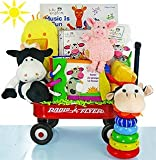 The Cashmere Bunny Baby Einstein Gift Basket (Day On The Farm)