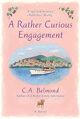book cover of A Rather Curious Engagement