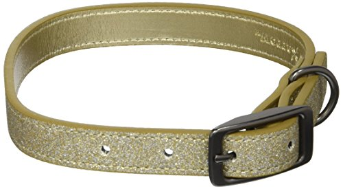 Collar Glam (Bow & Arrow PU Leather Glitter Gold Dog Collar with Pewter Hardware, Dog Collar for Medium Dogs)