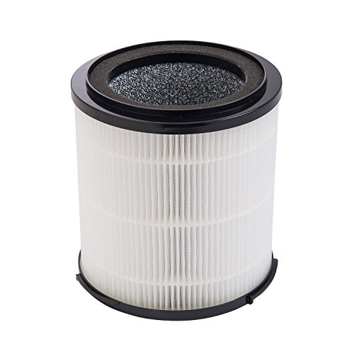 SilverOnyx True HEPA Filter Replacement (5-Speed, Large Room) 4-in-1 Air Purifier HEPA Replacement Filters - Best HEPA H13 Filter for Allergies, Pets, Smoke and Dust. for Large Room 500 sq ft. Black ()