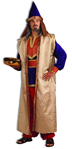 Forum Novelties Men's Deluxe Garnet Wise Man Costume, Multi, One -