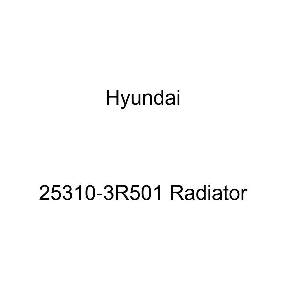 Hyundai 25310-3R501 Radiator