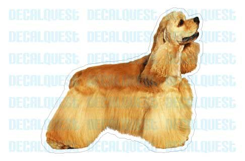 Decal -sticker car got window gift (Cocker Spaniel Collectables)
