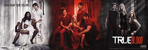 True Blood Poster Poster Print, 36x12