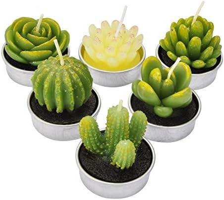 BELLEF%C3%89E Tealight Decorative Delicate Succulent product image