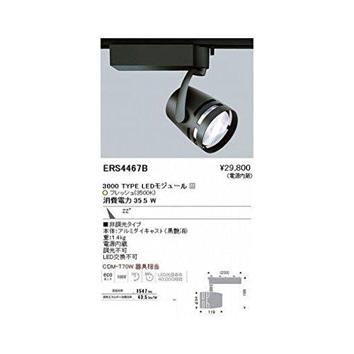 BW55957 生鮮スポット/3000タイプ/生鮮3700K/中角/黒 B06XSH7CZ3