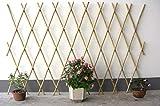 Expandable Bamboo Poles Trellis with Aluminum Rivets