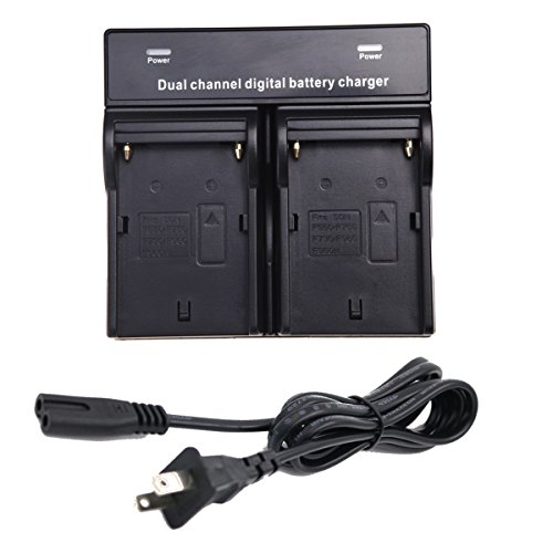 Double Twin AC Battery Charger Sony NPF330 NP-F530 NP-F550 NP-F570 NP-F770 NP-F970 DSR-PD100AP DSR-PD150 DSR-PD150P DSR-PD170 DSR-PD170P DSR-PD190P HVR-M10P HVR-M10U