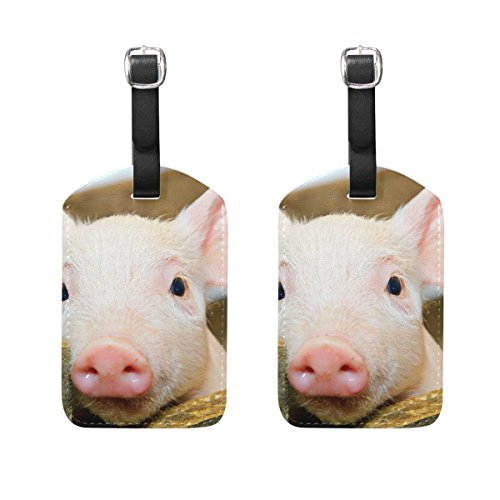 Luggage Tags Baby Pig Womens Bag Suitcase Tags